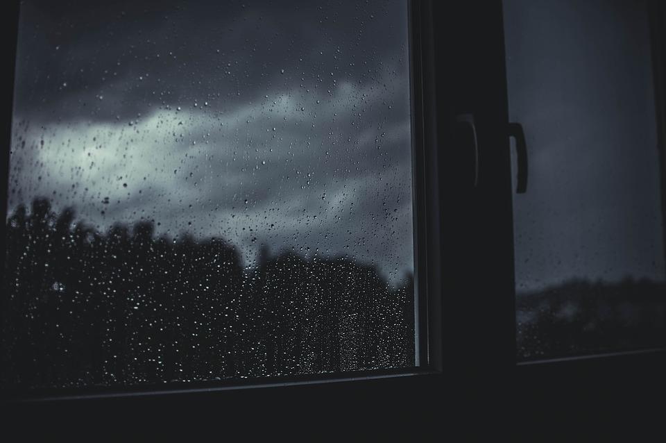Comment survivre à un déménagement dans un climat pluvieux