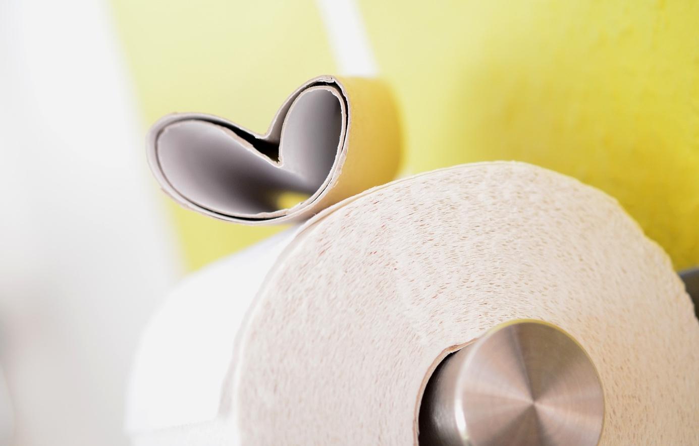 Comment choisir un porte papier toilette?